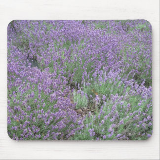 Wonderful English Lavender Mouse Pad