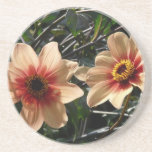 Wonderful Flower Coasters