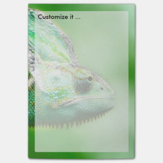 Wonderful Green Reptile Chameleon Post-it Notes