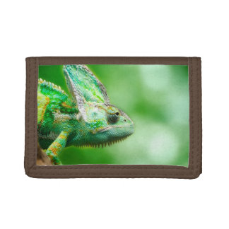 Wonderful Green Reptile Chameleon Trifold Wallet