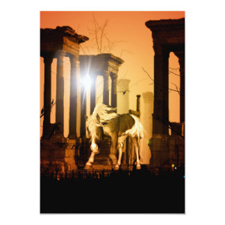 Wonderful horse in the sunset card