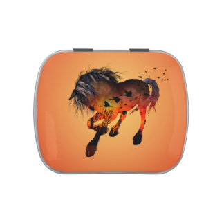 Wonderful horse jelly belly candy tins