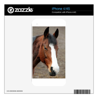 Wonderful Horse Decal For iPhone 4