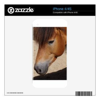 Wonderful Horse iPhone 4S Decals