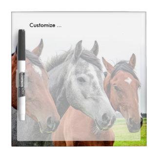 Wonderful Horses Stallion Photography Dry Erase Board
