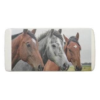 Wonderful Horses Stallion Photography Eraser