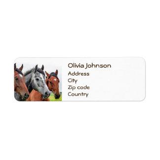 Wonderful Horses Stallion Photography Label