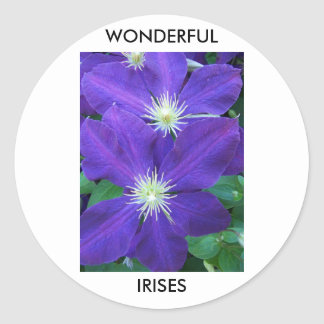 Wonderful Irises Classic Round Sticker
