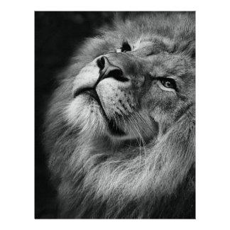 Wonderful Lion Letterhead