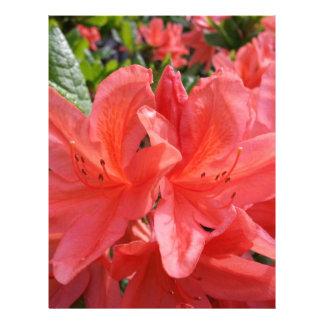 Wonderful Macro Flower Custom Letterhead