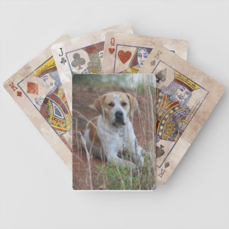 Wonderful Old Red Tick Hound Playing Cards