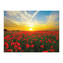 Wonderful Poppy Field Sunset Horizon Canvas Print
