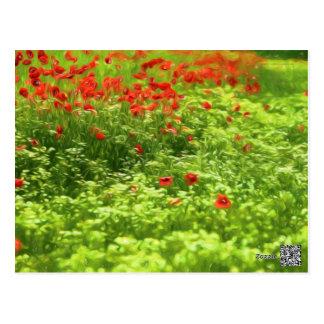 Wonderful poppy flowers V - Wundervolle Mohnblumen Postcard