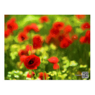 Wonderful poppy flowers VI - Wundervolle Mohnblume Postcard