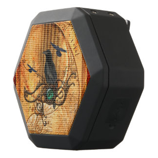 Wonderful raven black bluetooth speaker