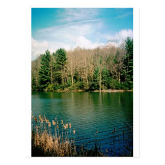 Wonderful Rustic Lake Postcard