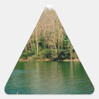 Wonderful Rustic Lake Triangle Sticker