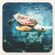 Wonderful Sea Turtle Underwater Life Square Paper Coaster