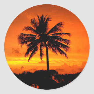 Wonderful Sunset Classic Round Sticker