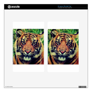 Wonderful Tiger Kindle Fire Decals
