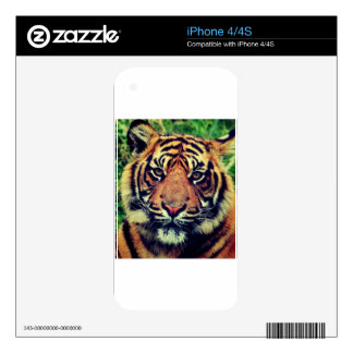 Wonderful Tiger Decal For The iPhone 4S