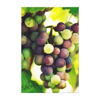 Wonderful Vine Grapes,  Autumn Fall Sun Canvas Print
