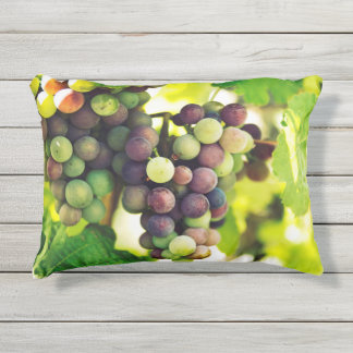 Wonderful Vine Grapes,  Autumn Fall Sun Outdoor Pillow