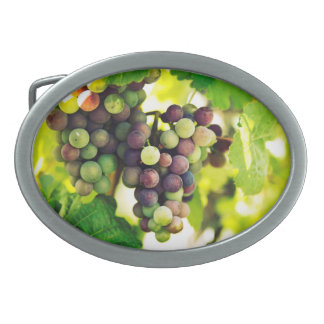 Wonderful Vine Grapes,  Autumn Fall Sun Oval Belt Buckle