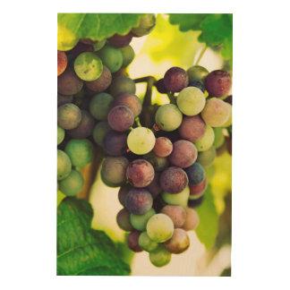 Wonderful Vine Grapes,  Autumn Fall Sun Wood Print
