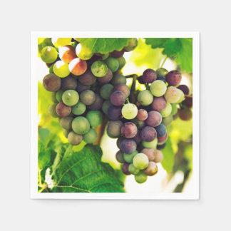 Wonderful Vine Grapes, Nature, Autumn Fall Sun Napkin