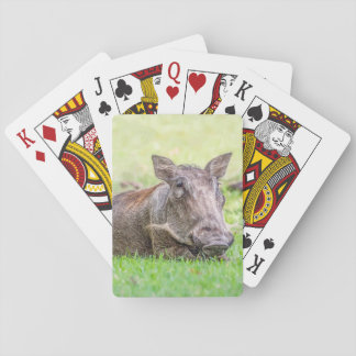 Wonderful Warthog Playing Cards
