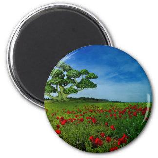 Wonderful World Magnets