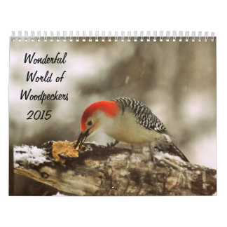 Wonderful World of Woodpeckers 2015 Calendar