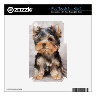 Wonderful yorkie skins for iPod touch 4G