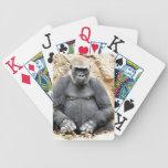 Wondering!_ Card Deck