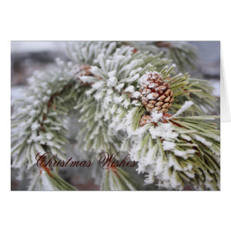 wonderland, Christmas Wishes Card