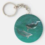 Wonderous Dolphins Key Chains