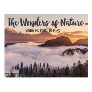 Wonders Of Nature Postcard
