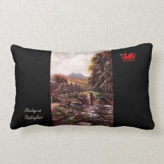 Wonders of Wales Pillow