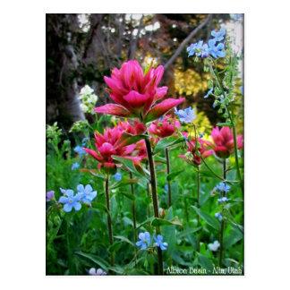 Wondrous Wildflowers (5) Post Card