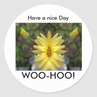 WOO-HOO Have a nice Day Round Stickers