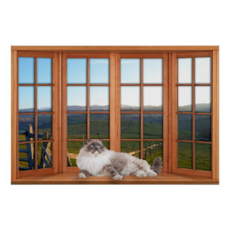 Wood 4 Pane Window Illusion with Cat on the Sill Poster