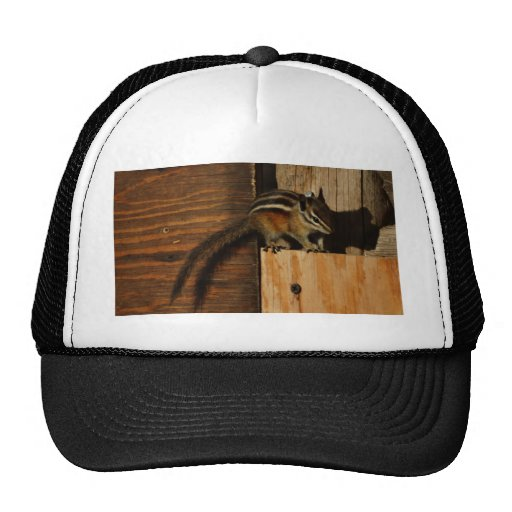 Wonderful OLI601246 United Kingdom  Women39s  Wood Wood  Hat