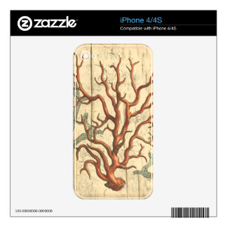 Wood and Small Coral iPhone 4S Decal