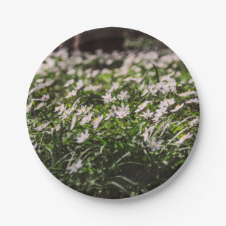 Wood Anemone Flowers Meadow in The Woods 7 Inch Paper Plate