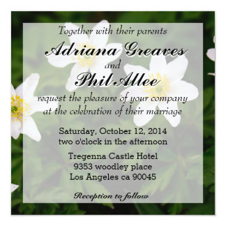 """Wood Anemone White Flowers, Floral Photo 5.25"""" Square Invitation Card"""