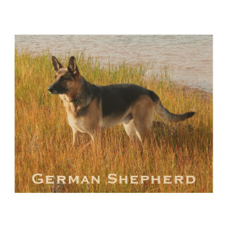 Wood Art Print 2 | German Shepherd Dog by the Sea