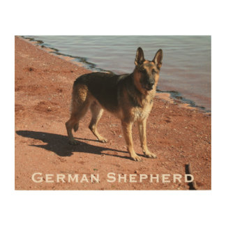 Wood Art Print | German Shepherd Dog by the Sea