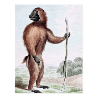 Wood Baboon with Walking Stick Postcard