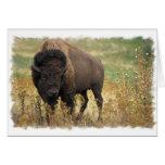 Wood Bison Greeting Card